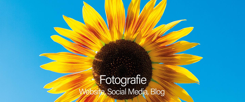 Digitale Fotografie für das Web - Hundertmark Fotografie